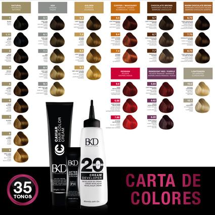 BKD Carta de Colores